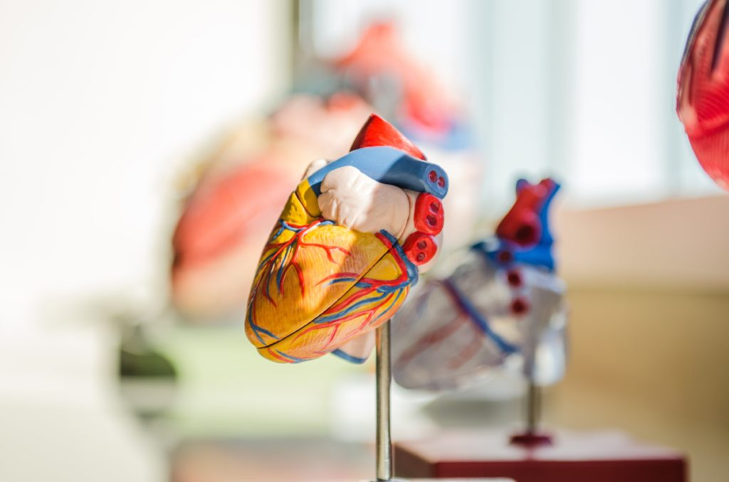Cure thermale et maladie cardio arterielle